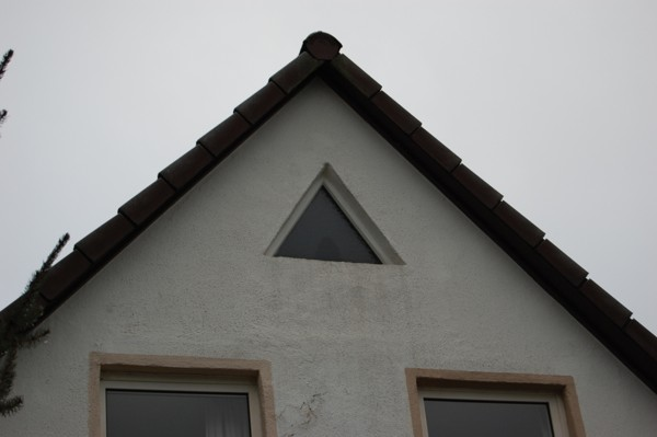 Fledermausschutz Südhessen Verschalung am Haus